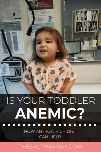 So you found out your baby or toddler is anemic- now what? Tips on how to sneak more iron into their diet at TheSaltyMamas.com. #babyanemia #toddleranemia #ironrichdiet #ironrichfoods #ironrichfoodsfortoddlers #momlife #oneyearappointment #oneyeardoctorsappointment #oneyearblooddraw #anemia #anemiadiet