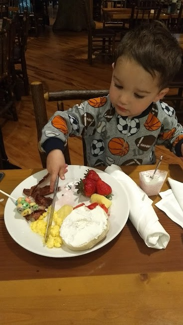 toddler eating a variety of foods
