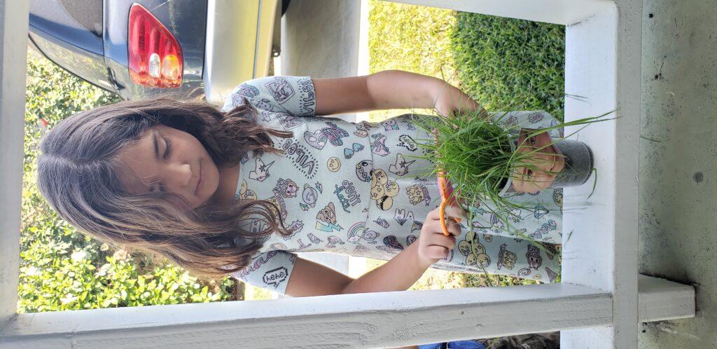 child planting grass