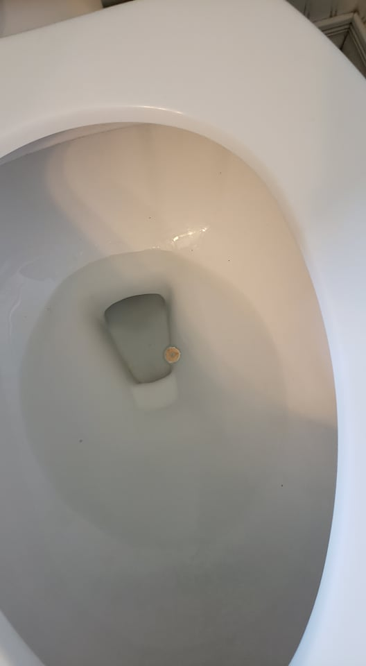 a cheerio in the toilet