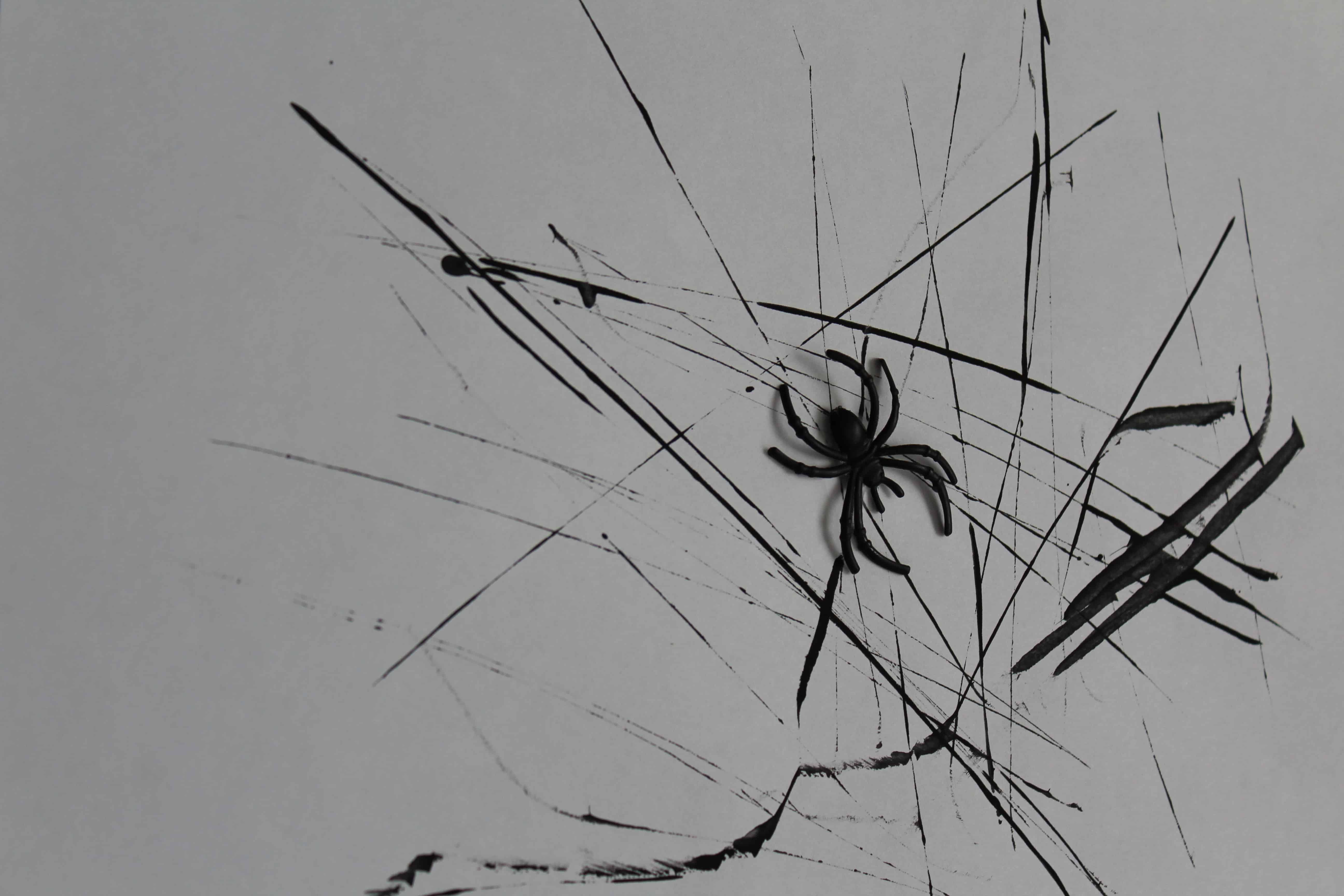 spider ring placed in spiders web.