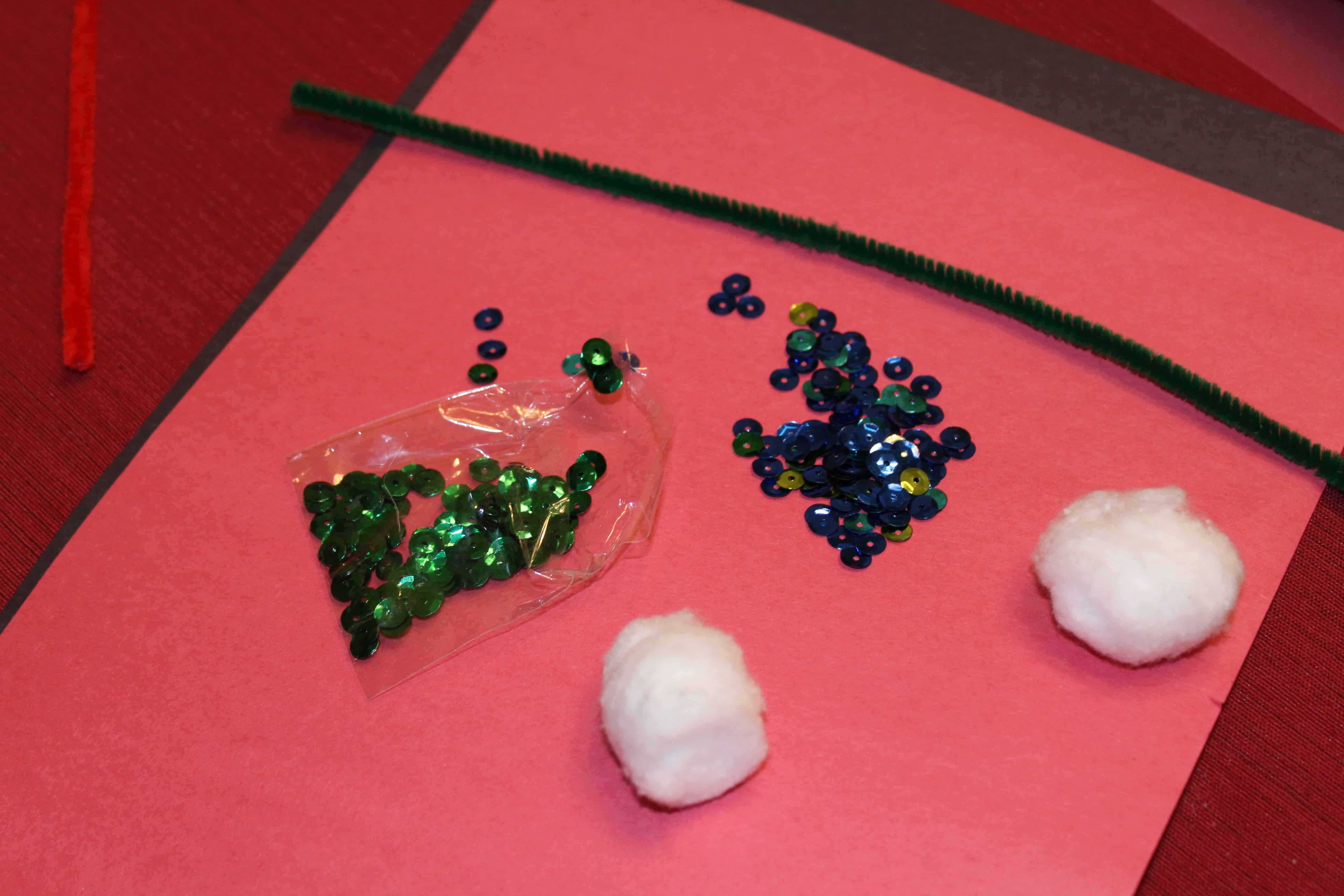 sequins, cotton balls, pipe cleaners