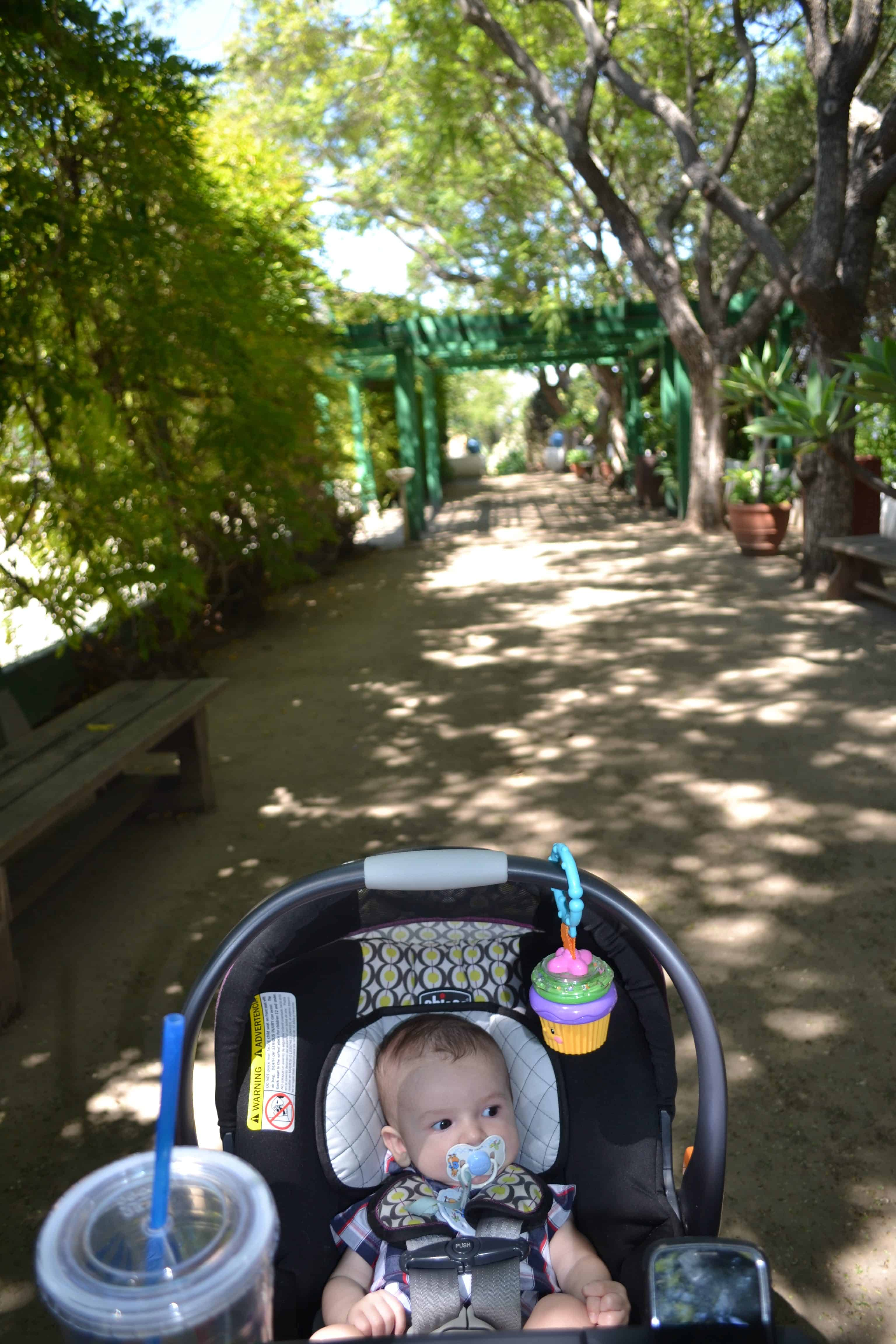 Baby walking in a forested area in a stroller.