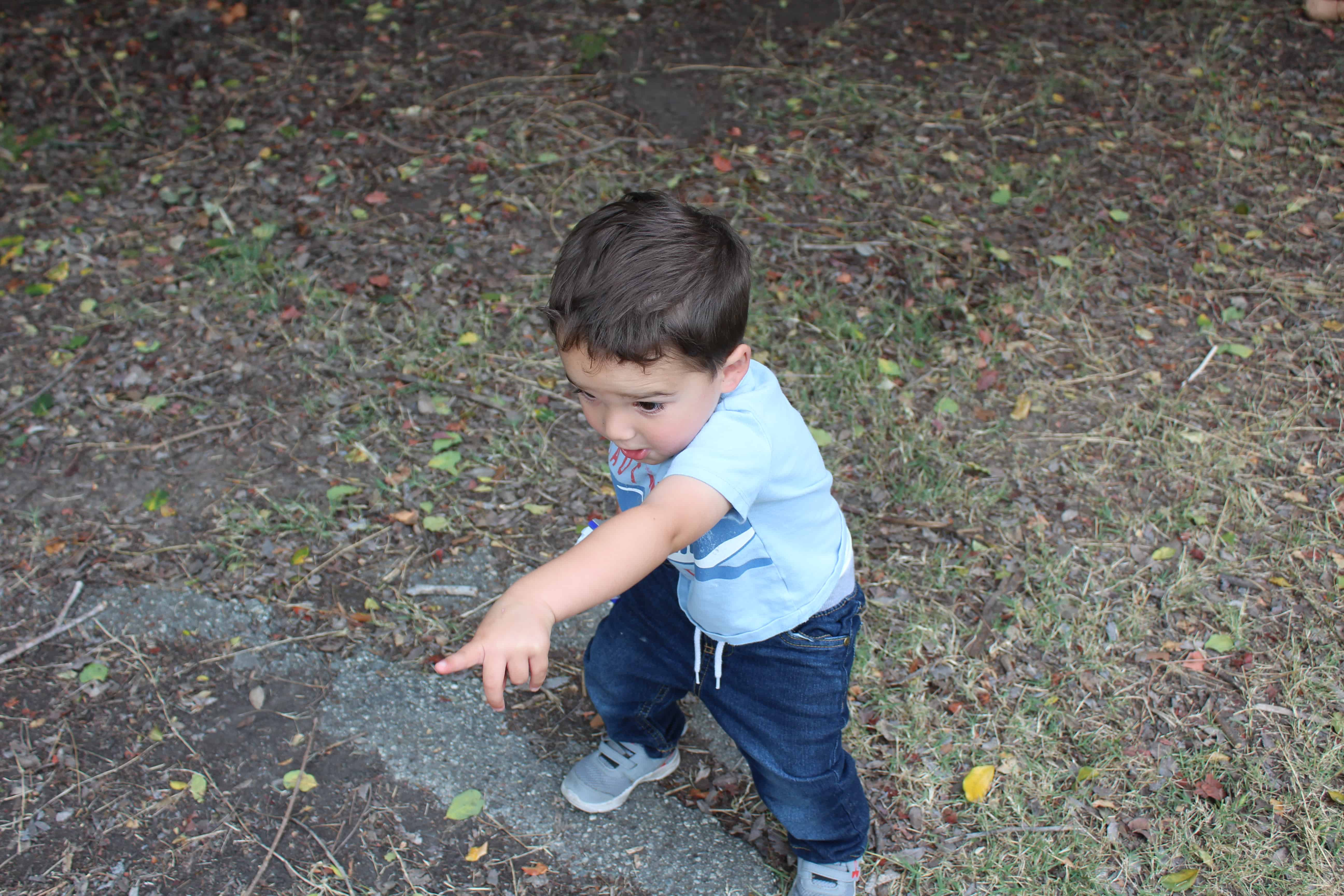 preschool boy exploring in the woods, pointing at somehing he sees