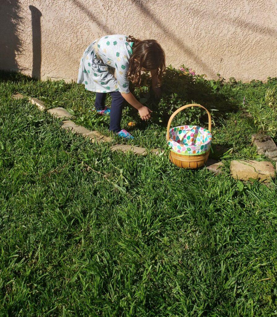 preschooler looking for rainbow rocks